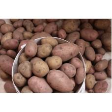 Картофель домашний 1 кг.