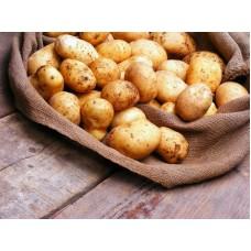 Картофель новый урожай 1 кг.