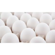 Яйцо куриное отборное